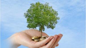 como investir em fundos